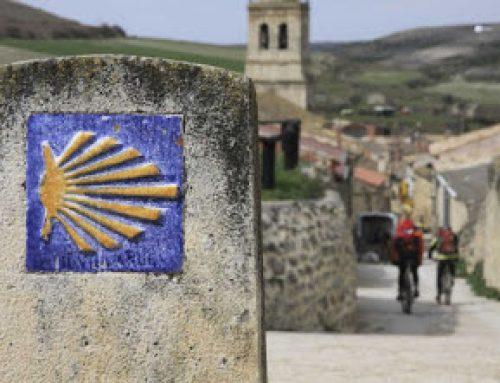 Avviso di selezione per la partecipazione a tre Visite Studio in Spagna, Bulgaria e Norvegia nell'ambito del progetto europeo PANHERA
