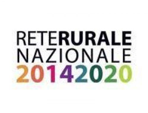 """Il GAL del Ducato presente al Webinar della Rete Rurale Nazionale dal titolo """"Azioni in rete per rafforzare la programmazione Leader"""""""