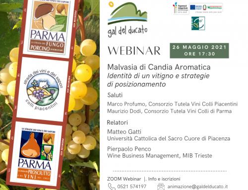 """Webinar – 26 Maggio 2021 – Ore 17,30 – """"Malvasia di Candia Aromatica – Identità di un vitigno e strategie di posizionamento"""""""