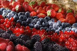 """Bando A.2.4.c """"Buone prassi e percorsi metodologici indirizzati all'aggregazione degli operatori del sottobosco"""" – Bando azione ordinaria 4.1.01 per operatori che coltivano i seguenti prodotti: piccoli frutti, castagne noci e nocciole"""
